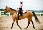 Puzzle equitation