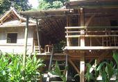 Puzzle gratuit au jardin des bambous
