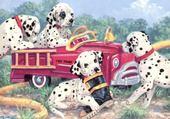 Jeu puzzle dalmatiens
