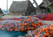 village de pêcheurs - Inde du Sud