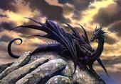 Puzzle dragon noir