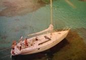 Puzzle bateau sun fizz  Fazio