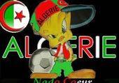 Jeux de puzzle : algerie