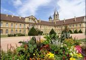 Puzzle Abbaye de Cluny
