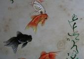 Jeux de puzzle : poissons