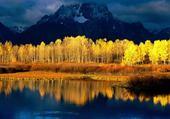 Puzzles paysage automne