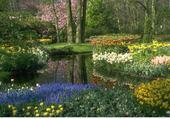 Puzzle sous bois fleuri