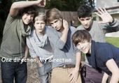 Puzzles One direction, My direction