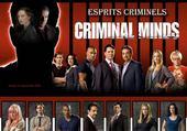 Puzzle esprits criminels