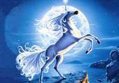 le cheval qui hurlait a la lune