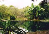 Réserve - Equateur