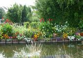 rive fleurie