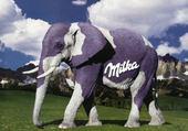 Puzzle Aprés la vache, l'éléphant