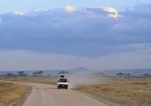 Amboseli la piste des Eléphants