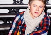 Puzzle Niall Horan