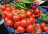 Puzzle tomates par hélène