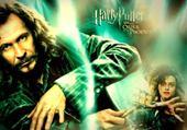 Sirius Black et Bellatrix