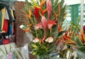 fleurs tropicales 974