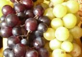 Fruits de la vigne