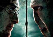 Puzzle Harry Voldemort