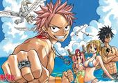 fairy tail plage