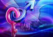 Puzzle Masculin, féminin