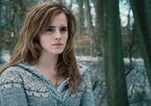 Harry Potter - Hermione