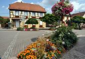 Puzzle Village fleuri