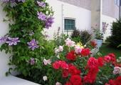 Décoration florale d'une entrée