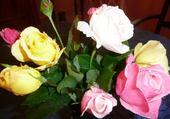 Les roses de Rico