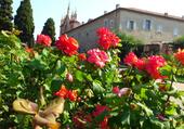 roseraie à Nice