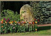 Puzzle Parc au printemps