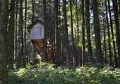 Forêt du Crêt
