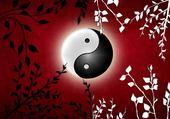 Puzzle clair de lune ying-yang