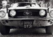 mustang(FORD)