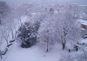 Melun sous la neige