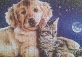 Puzzle Puzzle chien-chat