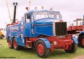 scammell williams