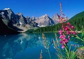 paysage buccolique lac montagne