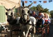 Les mules St Eloi