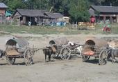 Puzzle birmanie
