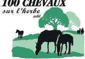 100 chevaux sur l herbe