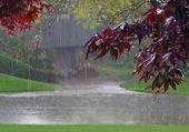 Puzzle Il pleut