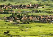 Puzzle route des vins