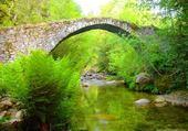 pont de pierre évcrin de verdure
