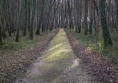 Parc de Bresse