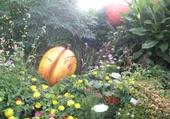 au jardin de Coêtz en Vendée