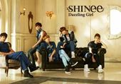 Puzzle SHINee fh