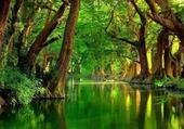 Puzzle rivière