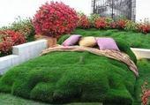 Puzzle Zen côté jardin